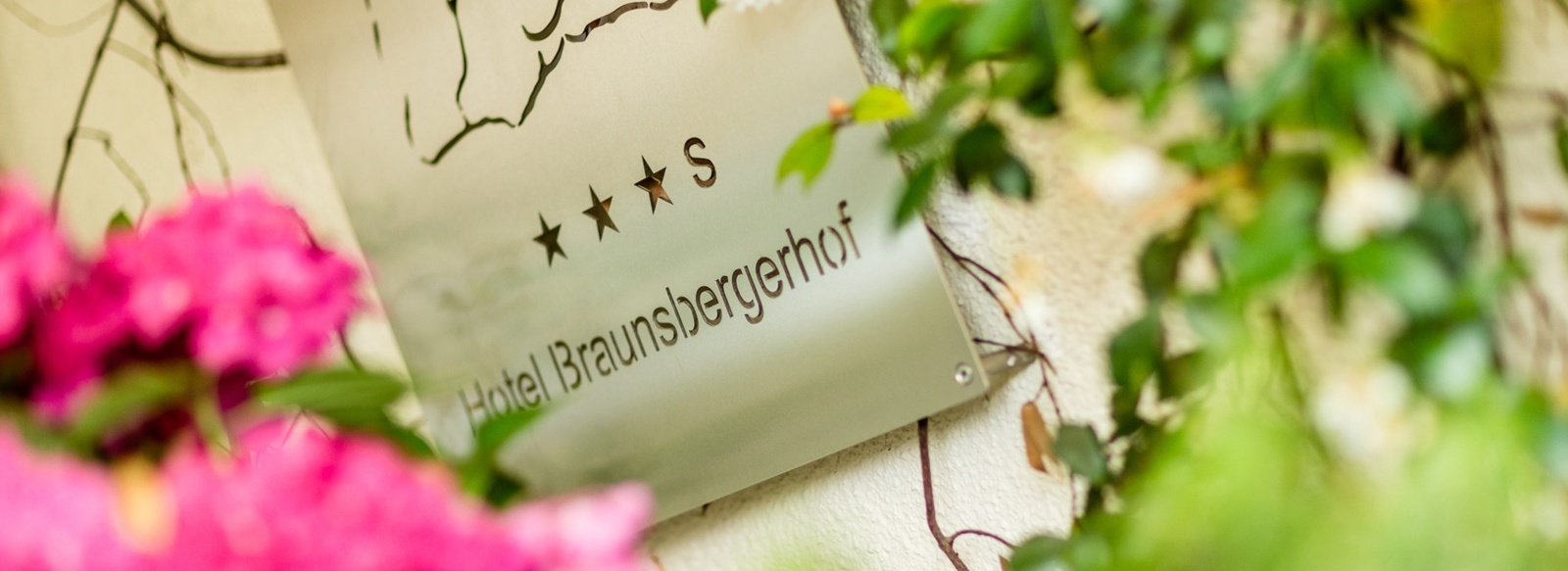 The hotel Braunsbergerhof it the beautyful Lana